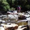 Tasmanie300A.jpg