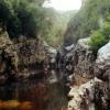 Tasmanie307A.jpg